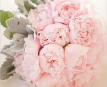 Proberte štěstí v lásce květinami – Feng Shui