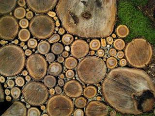 wood-natural-path-patio-design