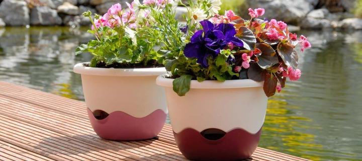 Aby vaše květiny na balkóně rostli